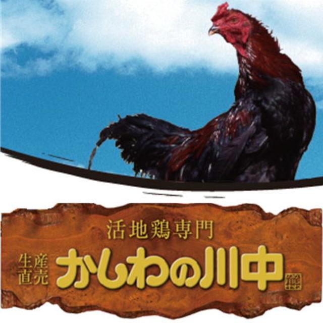 かしわの川中 活地鶏専門販売店 穏座 ONZA 直営地鶏料理 さんのプロフィール写真
